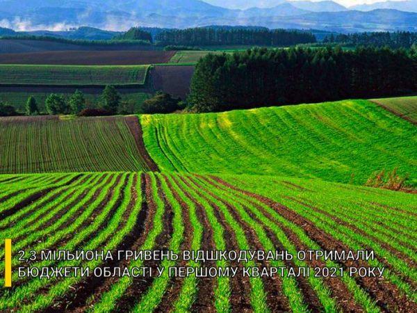 Бюджети Кіровоградщини отримали два мільйони за втрати сільськогосподарського виробництва