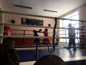 У Кропивницькому визначили кращих юних боксерів області