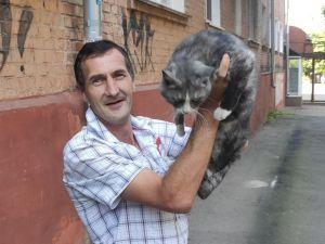 Кіровоградська область: В Олександрії кіт застряг між сходами