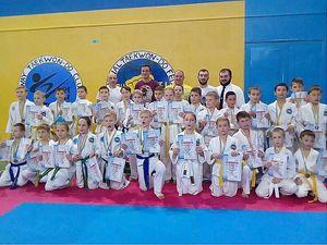 У Кропивницькому визначали кращих юних майстрів таеквон-до