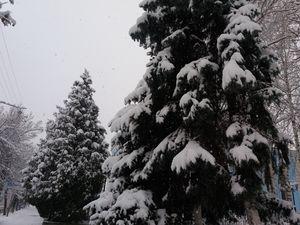 Погода у Кропивницькому 18 січня