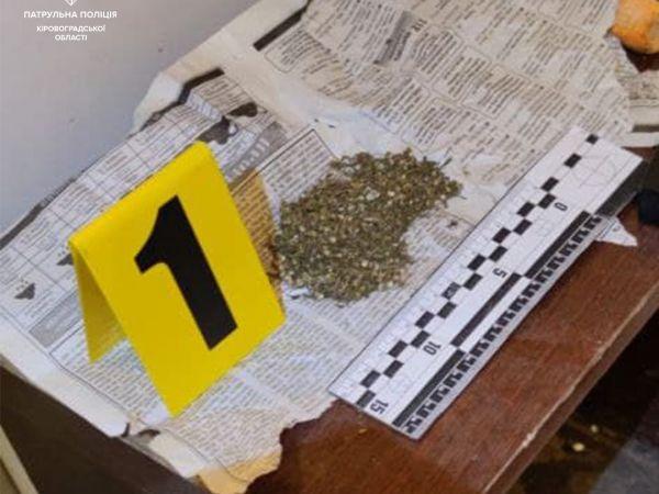 У Кропивницькому під час виклику патрульні знайшли в будинку канабіс