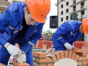 Безробітним Кіровоградщини пропонують стати мулярами
