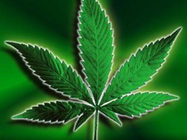 Наркоман о марихуане конопля а вредна