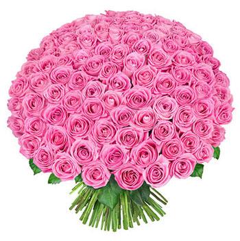 Світ квітів позитивчик живые цветы