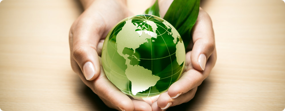 protection of environment in india essay